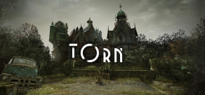 Купить Torn