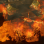 Скриншот из игры Cities: Skylines - Natural Disasters