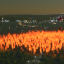 Игра Cities: Skylines - Natural Disasters