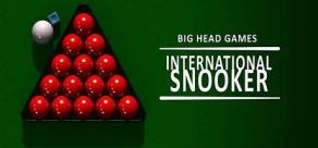 Купить International Snooker